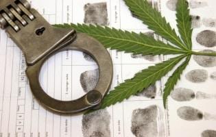 Nach dem Drogentest kann eine Strafe folgen mit Bußgeld, Fahrverbot und Punkten in Flensburg.